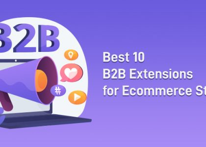 Best 10 B2B Extensions for Ecommerce Stores
